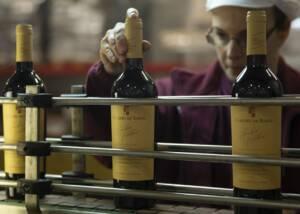 Wine Bottles of João Portugal Ramos