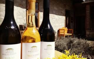 Wine Bottles of Karadi Berger Winery