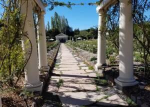 Outdoor Area Of The Karah Estate Vineyard Winery