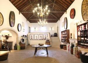 Inside Look of José Maria Da Fonseca Manor House