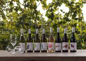 Display of Wine Bottles of Lyrarakis Winery