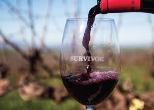 Tasting at Overhex International Wines