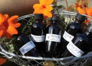 Wine Bottles Of The Pierce Ranch Vineyards Winery