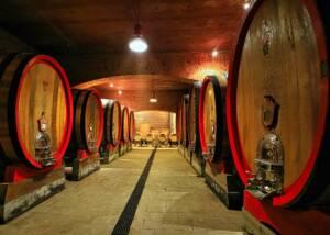 barrels at the cellar of podere ai valloni