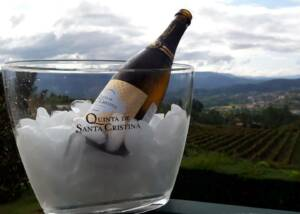 A Bottle Of Wine Submerged On Ice At Quinta De Santa Cristina Winery