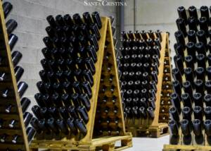 wine bottles of the quinta de santa cristina winery