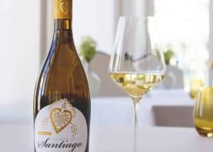 Quinta De Santiago Wine Tasting