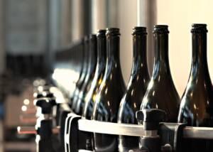 bottling wines at san martino coluccivini