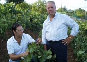 owners of san martino coluccivini