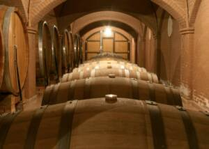 large barrels stored at sandro de bruno