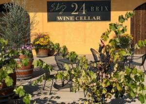 Garden area of the Schmitz 24 Brix Wines winery