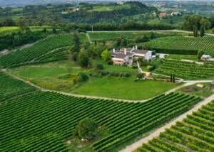 Vinery of Valellovo Winery