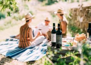 picnic at vecchie terre di montefili