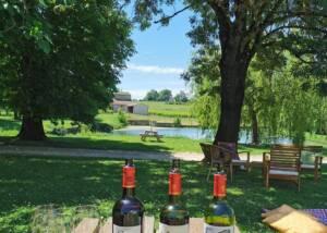 Wine Tasting At Vignobles Carles Winery