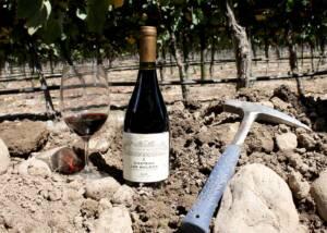 a bottle of wine by viña los boldos