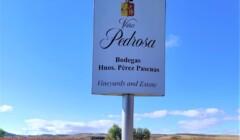 Signboard In The Vineyard Of The Viña Pedrosa Winery