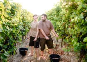 The Team in the Vineyards at Weinbau Schreiber