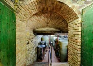 The Way to the Weinbau Schreiber Cellars