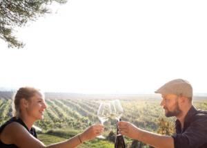 Weingut Alois Hollerer Wine Tasting