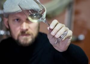 A Glass of Weingut Alois Hollerer Wine