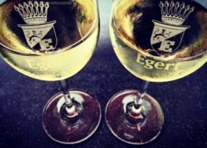 Wine Glasses of Weingut Egert Winery