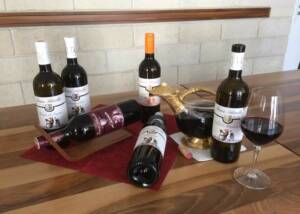 Wine Bottles Of The Weingut Franz Schindler Winery