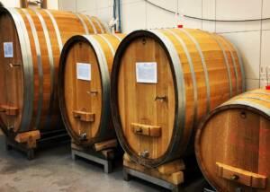 Barrels Of The Weingut Uwe Geßner Winery