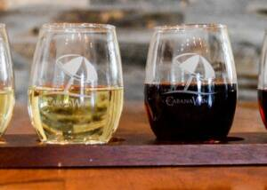 Wine Glasses at Cabana Winery