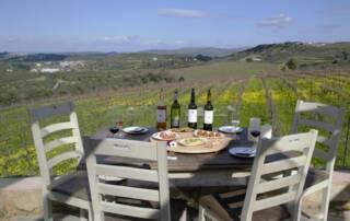 Wine Tasting Area of Domaine Paterainakis