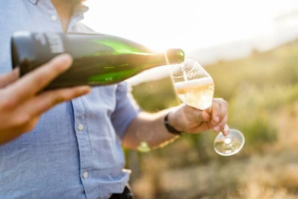 Wine Tasting at Wein Und Sektgut Barth