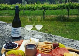 Picnic in the vineyard at Ashton Hills Vineyards