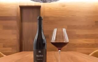Wine Tasting at Belo Brdo Winery