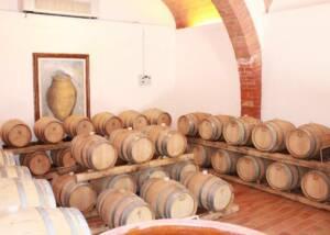 Bindella Tenuta Vallocaia Cellars