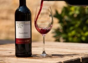 Wine Tasting at Chumbderhof
