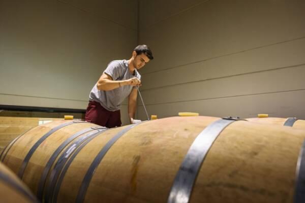 dehesa-de-luna-winery-castilla-la-mancha-wine-tasting