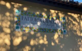 Company Name of Fattoria Lavacchio