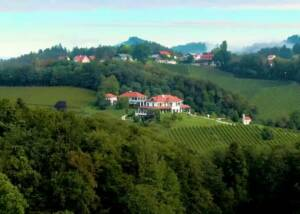 Estates of Hirschmugl - Domaene am Seggauberg