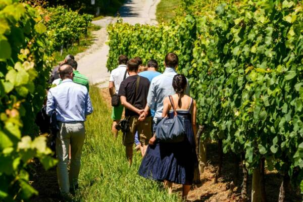Hizuzta Bodega Visitors Basque Country