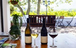 Wine Tasting at Ken Forrester Wines