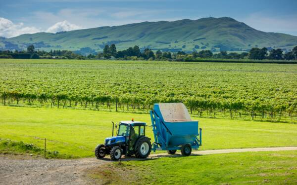 Matahiwi_Estate_winery_new_zealand_wairarapa