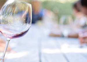 Wine Tasting at Weingut Meier Schmidt