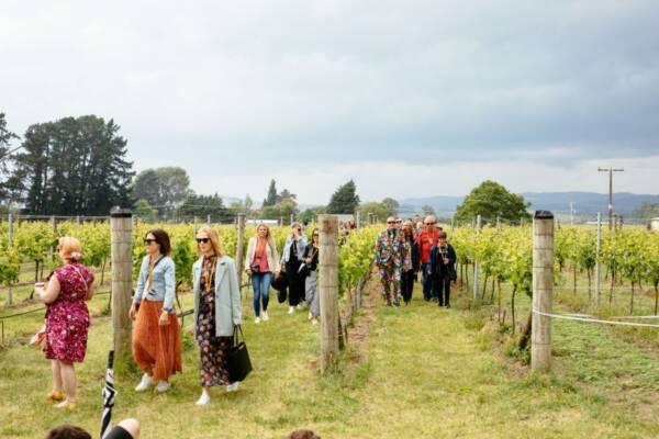 palliser-estate-wines-vineyard-tour-new-zealand