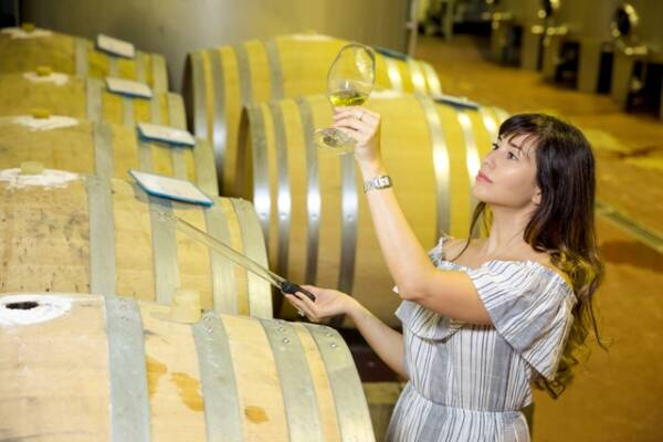 pazo-pondal-wine-cellar-wineries-in-galicia