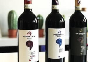 Podere la ja Wine Bottles in Chianti, Tuscany, Italy