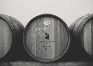Barrels of Quinta De Sant'Ana