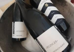 Schnaitmann Wine Bottles