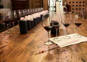 Wine Tasting at Tenuta Baron Winery
