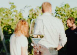 Wine Tasting at Weingut Schloss Janson
