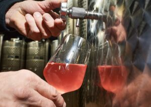 Wine Tasting at Albiana Estate - Vinska klet Žaren