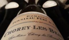 A Bottle of Domaine Poulleau Michel Pere & FILS Wine